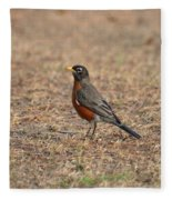 Spring Robin 2014 Fleece Blanket