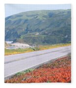 Spring, Route 1, California Coast Fleece Blanket