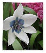 Spring Star Fleece Blanket