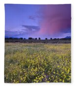 Spring Storm At Andalucia Fleece Blanket