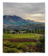 Spring Time In The Valley Fleece Blanket