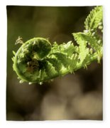 Spring Unfurled Fiddlehead Fleece Blanket