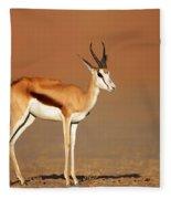 Springbok On Sandy Desert Plains Fleece Blanket