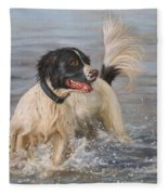 Springer Spaniel Fleece Blanket