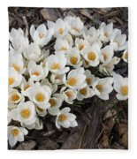Springtime Abundance - A Bouquet Of Pure White Crocuses Fleece Blanket