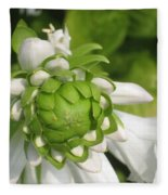 Springtime Bud Fleece Blanket