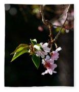 Springtime In Napa Ca Fleece Blanket