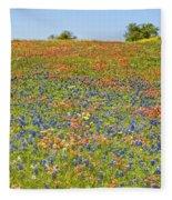 Springtime In Texas 5 Fleece Blanket
