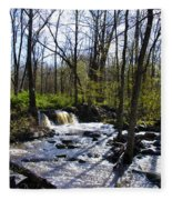 Springtime In The Mountains Fleece Blanket