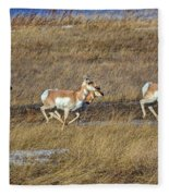 Sprinting Pronghorn Fleece Blanket