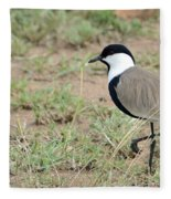 Spur-winged Lapwing Fleece Blanket