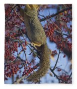 Squirrel 3 Portable Battery Charger for Sale by Becca Buecher