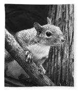 Squirrel Black And White Fleece Blanket