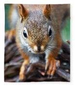 Squirrel Close-up Fleece Blanket
