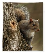 Squirrel Fleece Blanket