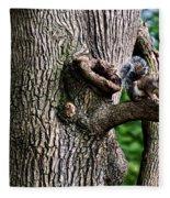 Squirrel Guarding Watering Knot Fleece Blanket