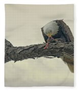 Squirrel Lunch Fleece Blanket