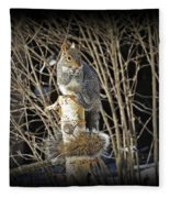 Squirrel On Birch Post Fleece Blanket