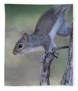 Squirrel Pose Fleece Blanket