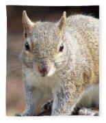 Squirrel Profile Fleece Blanket