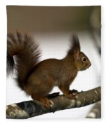 Squirrel Profile Fleece Blanket