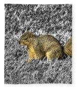 Squirrling Around Looking For Nuts Fleece Blanket