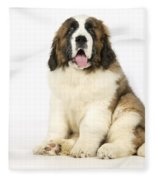 St Bernard Dog Fleece Blanket