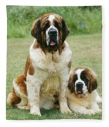 St Bernard With Puppy Fleece Blanket