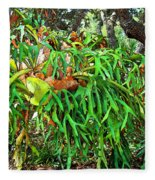 Staghorn Fresco Fleece Blanket