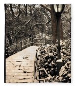 Stairway In Central Park On A Stormy Day Fleece Blanket