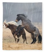 Stallion Challenge Fleece Blanket
