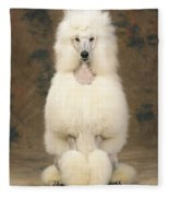 Standard Poodle Dog Fleece Blanket