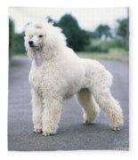 Standard Poodle Dog, Unclipped Fleece Blanket