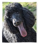 Standard Poodle Fleece Blanket