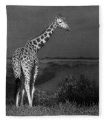 Standing Tall Fleece Blanket