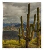 Standing Tall In The Sonoran Desert  Fleece Blanket