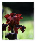 Standout Stand Tall Stand Proud Fleece Blanket