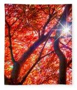 Star Light Thru Maple Fleece Blanket