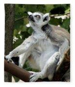 Lemur Stare Fleece Blanket