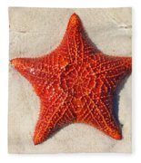 Starfish 4 Of Bottom Harbour Sound Fleece Blanket