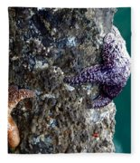 Starfish Under The Pier Fleece Blanket