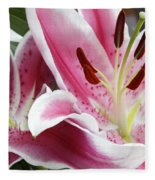 Stargazer Lily Flowers Closeup Fleece Blanket