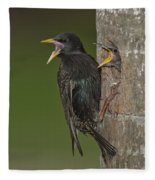 Starling And Young Fleece Blanket
