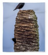 Starlings 2 Fleece Blanket