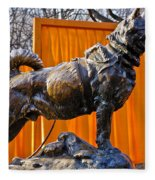 Statue Of Balto In Nyc Central Park Fleece Blanket
