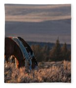 Steens Sundown Fleece Blanket