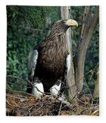 Stellers Sea Eagle Fleece Blanket