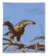 Steppe Eagle Aquila Nipalensis 1 Fleece Blanket