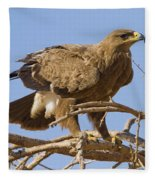 Steppe Eagle Aquila Nipalensis 2 Fleece Blanket
