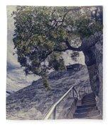 Steps To Beauty On Moro Rock Fleece Blanket